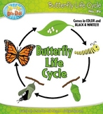 Butterfly Life Cycle Clipart {Zip-A-Dee-Doo-Dah Designs}