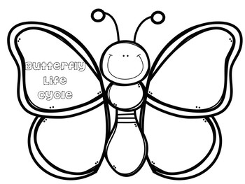 Butterfly Life Cycle Craft