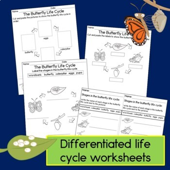 Butterfly Life Cycle Craft and Guided Reading Book
