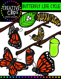 Butterfly Life Cycle {Creative Clips Digital Clipart}
