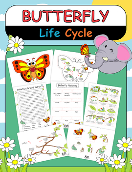 Butterfly Life Cycle Cut Paste Project