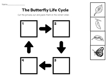 Butterfly Life Cycle Cut and Paste