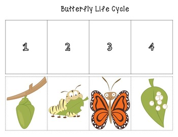 Butterfly Life Cycle Cut and Paste (color and b/w)