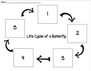 Butterfly Life Cycle Cut and Paste PACK