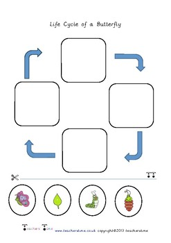 Butterfly Life Cycle Cut and Stick