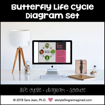 Butterfly Life Cycle Diagram Set