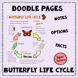 Butterfly Life Cycle Doodle Pages