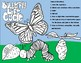 Butterfly Life Cycle Double Digit Addition NO Regrouping Math Craft