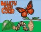 Butterfly Life Cycle Double Digit Subtracting With  Regrouping Math Craft