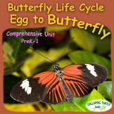 Butterfly Life Cycle - Egg to Butterfly