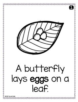 Butterfly Life Cycle Emergent Reader - Metamorphosis Booklet