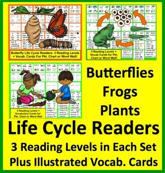 Life Cycles Bundle: Butterfly Life Cycle, Plants Life Cycle, Frog Life Cycle