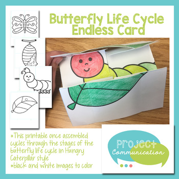 Butterfly Life Cycle Endless Card