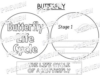 Butterfly Life Cycle Factball and Comprehension Sheet