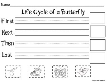 Butterfly Life Cycle Flip Flap Books