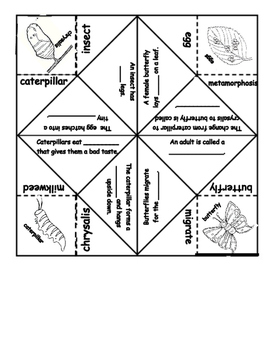 Butterfly Life Cycle Fortune Teller