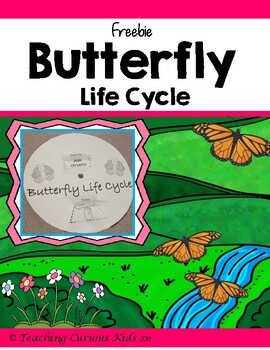 Butterfly Life Cycle Freebie