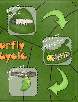 Butterfly Life Cycle {From Caterpillar to Butterfly a Non-Fiction Thematic Unit}