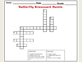 Butterfly Life Cycle Game Worksheets :