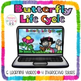 Butterfly Life Cycle Google Classroom/Google slides