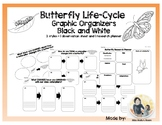 Butterfly Life Cycle Graphic Organizer: No Prep!