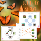 Butterfly Life Cycle Graphic Organizer (Homeschool Early Learning)