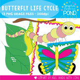 Butterfly Life Cycle Graphics  - Color + Line Art