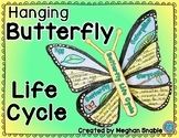 Butterfly Life Cycle Hanging Poster