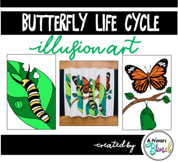 Butterfly Life Cycle Illusion Art