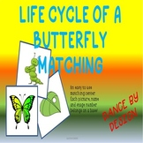 Butterfly Life Cycle Match