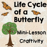 Butterfly Life Cycle Mini Lesson, Habitat Design Activity,  Creative Writing