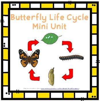 Butterfly Life Cycle Mini Study