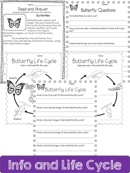 Butterfly Life Cycle: Mini Unit