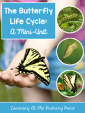 Life Cycle of a Butterfly - Unit for Preschool, Kindergarten, or First Grade