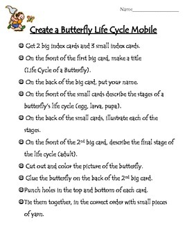 Butterfly Life Cycle Mobile