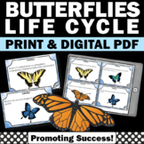 Butterfly Life Cycle Task Cards, Science Research Project