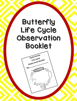 Butterfly Life Cycle Observation Booklet Printable