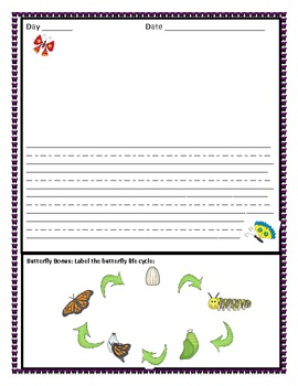 Butterfly Life Cycle Observation Journal
