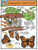 Butterfly Life Cycle {P4 Clips Trioriginals Digital Clip Art}