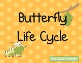 Butterfly Life Cycle Poster Set