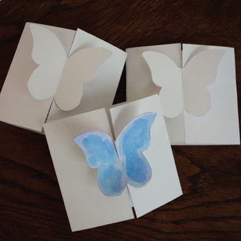 Butterfly Life Cycle Poster and Fold Out Book