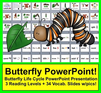 Butterfly Life Cycle PowerPoint - 3 Reading Levels + 34 Vocabulary Slides