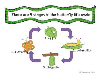 Butterfly Life Cycle PowerPoint - Fun, includes links to videos!