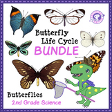 BUNDLE: Butterfly Life Cycle - Research and Creative Writing Project