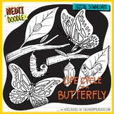 Butterfly Life Cycle Science Doodle Clipart