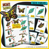 Butterfly Life Cycle Science Doodle Clipart Blue Borders