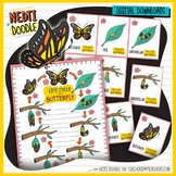 Butterfly Life Cycle Science Doodle Clipart Pink Borders