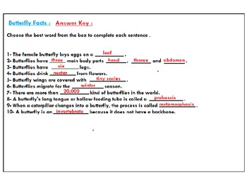 Butterfly Life Cycle Science Worksheets :