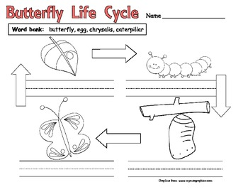 Butterfly Life Cycle Science Printable