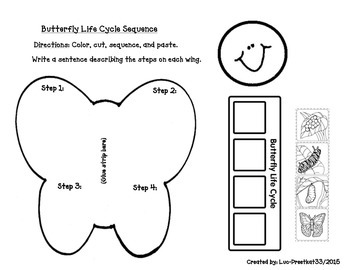 Butterfly Life Cycle Sequence
